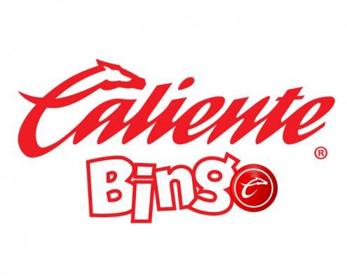 Bingo ole móvil de Winner casino-235917