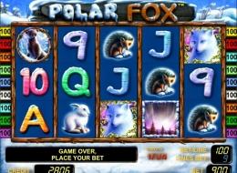 Juegos bet365 24 tragamonedas en linea-450524