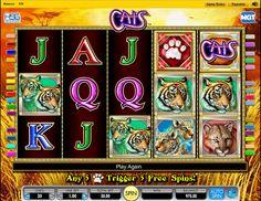 Seguro apuesta a caballo ganador jugar tragamonedas gratis 100 cats-510460
