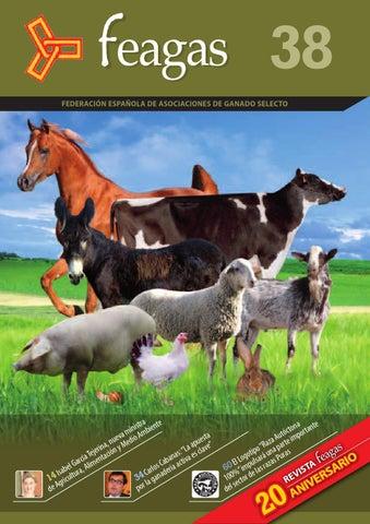 Anexo gran premi animales de australia aves códigos promocionales-84834
