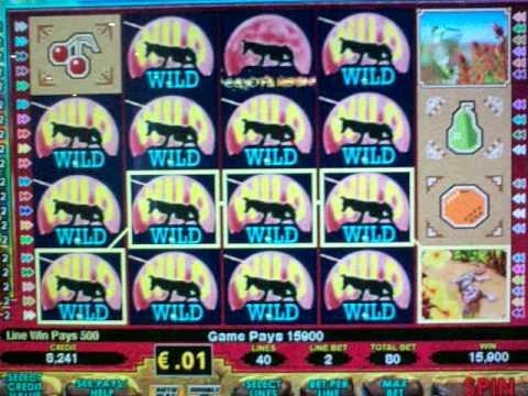 Casino gratis estrella tragamonedas Coyote Moon-59129