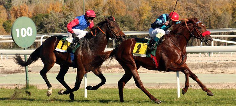 Descargar juegos de carreras de caballos código de cupón-14043