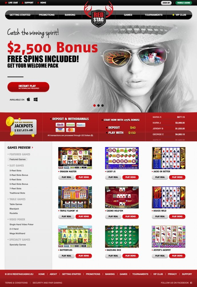 Bingo online netoPlay com-579035