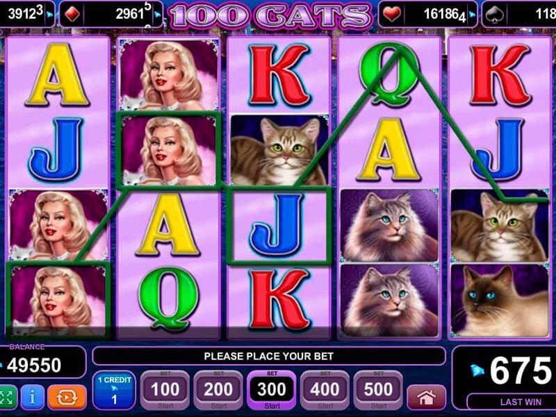 Tragamonedas gratis con juego cats online Pariplay-951787