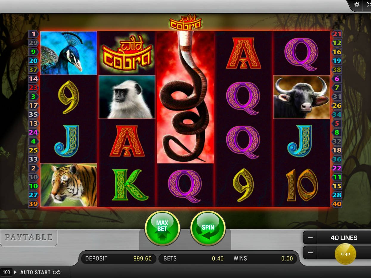 Tragamonedas gratis Wild Hunter jokerbet casino-25254